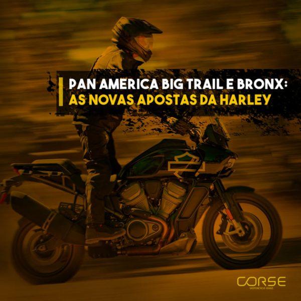 Harley Davidson Big Trail: Esportiva e elétrica?